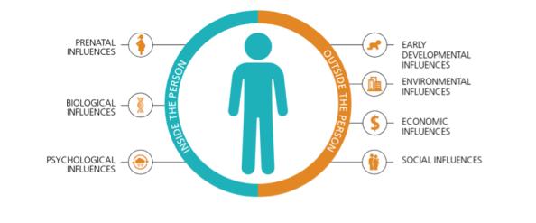 Metabolic Balance Infographic